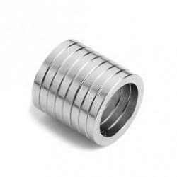 Ersatz-Neodym-Magnet (bitte für v4 oder v5 wählen)